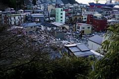 2011:03:11 13日後釜石市②