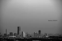 2020 Yokohama