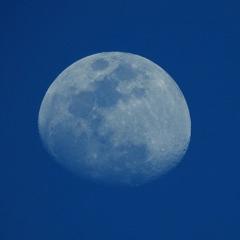 日没前の月
