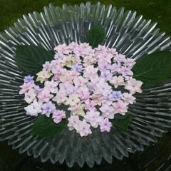 紫陽花 ガラス花器