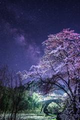 坂戸橋桜アーチ