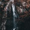 冬の箕面大滝