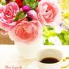 庭の薔薇(花とコーヒータイム)