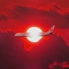36 Fly in The Red Sky