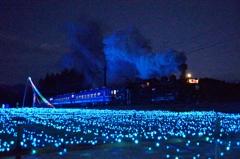 イルミネーションの中の祝賀列車!