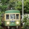 江ノ電旧型電車!