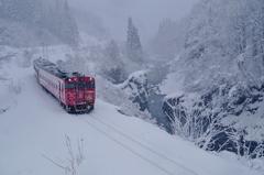 雪景色が見れました!