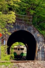 トンネルの向こうも手前も新緑‼