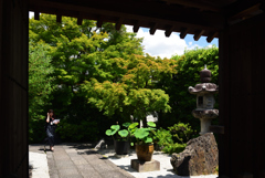 190624b妙心寺31長興院