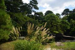 190903c京都御苑29