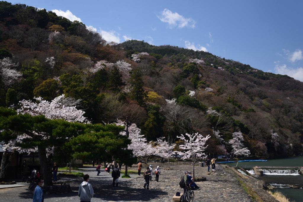 210326嵐山09