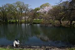 210331a山田池公園23