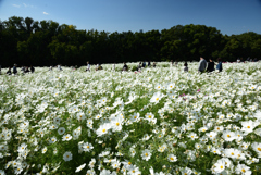 201025万博公園33