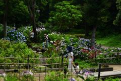 200627万博公園23