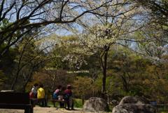 210331a山田池公園27