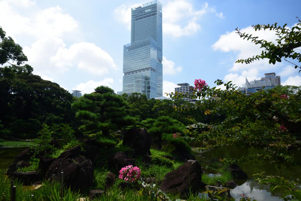 200730慶沢園18