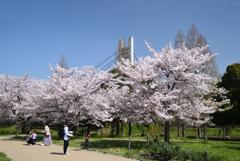 210331a山田池公園15