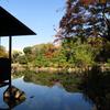 201126慶沢園12