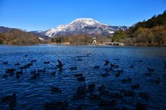 三島池からの伊吹山