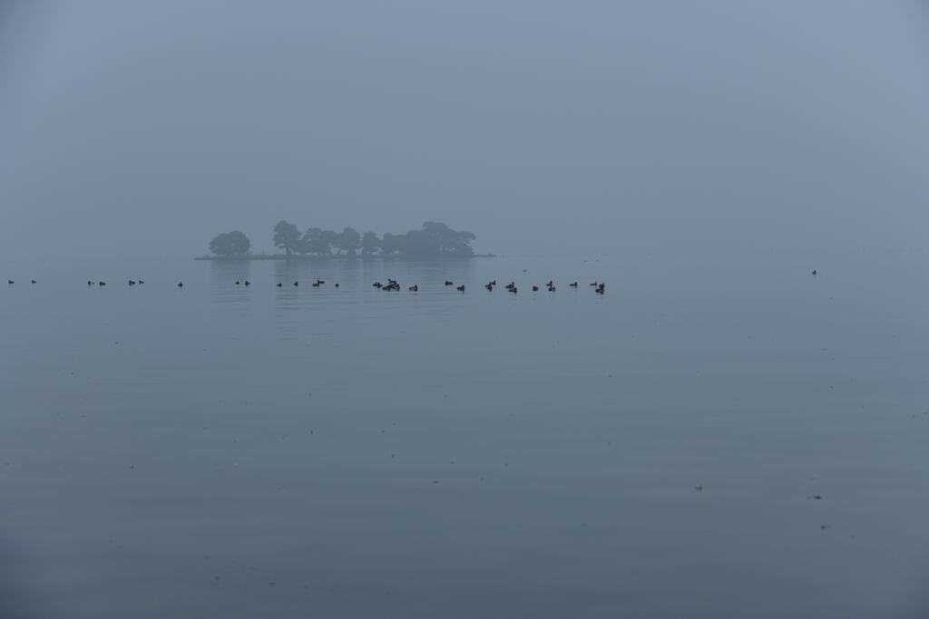 霧の宍道湖