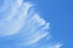 風のアート.。.:* ♬*゜