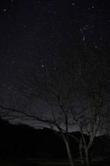 津山の星空