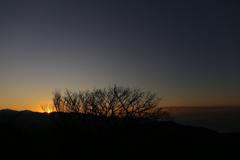 初冬 落陽