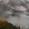 山麗の霧雲
