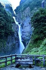 国指定の名勝 称名滝