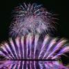 20分間に2万発越えの花火大会~輪島市民まつり④