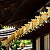 金色の吊り灯籠