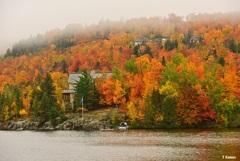 湖畔の秋②