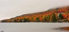 湖畔の秋①