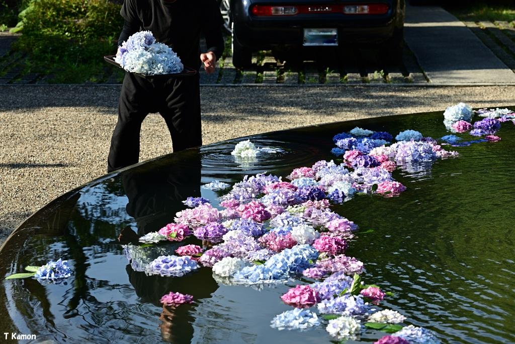 花のお葬式