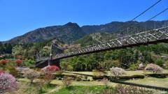 春の桃介橋