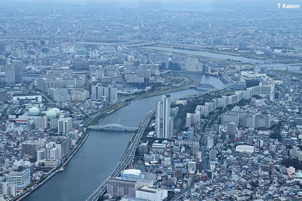 2016東京❷
