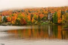 湖畔の秋③