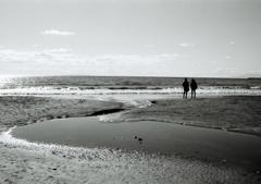 Monochrome Sea2