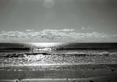 Monochrome Sea4