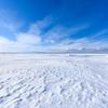 北の大地 -野付半島・冬2-