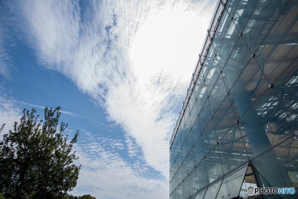 大温室と5月の空。