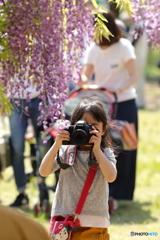 夢はカメラ女子?