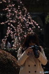 梅撮るカメラ美女