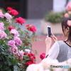 花のような人 ~君は薔薇より美しい2019~