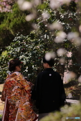花のような人々 ~平成に出会い令和を共に生きる編~