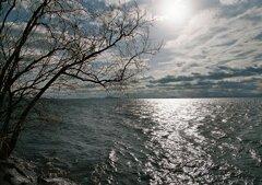 湖畔の景色 其の弐