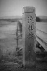 木津流れ橋09