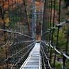 吊橋と紅葉
