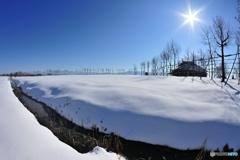 福島潟の冬