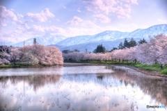 高田公園と妙高山